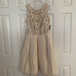 Taylor Dresses -beaded lace dress